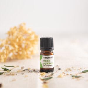 Aceite esencial menta piperita Bio Terpenic